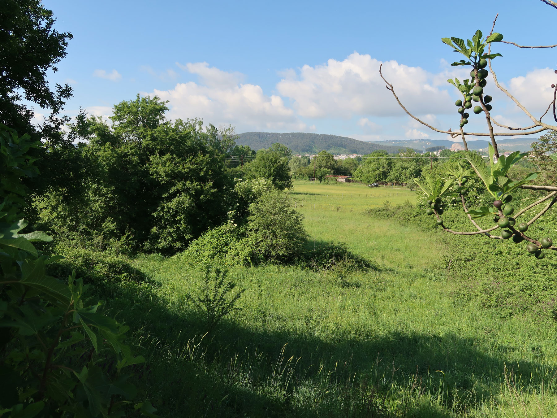 For sale a plot of 4,151 sq.m. with SD. 0.8 in Perama Ioannina
