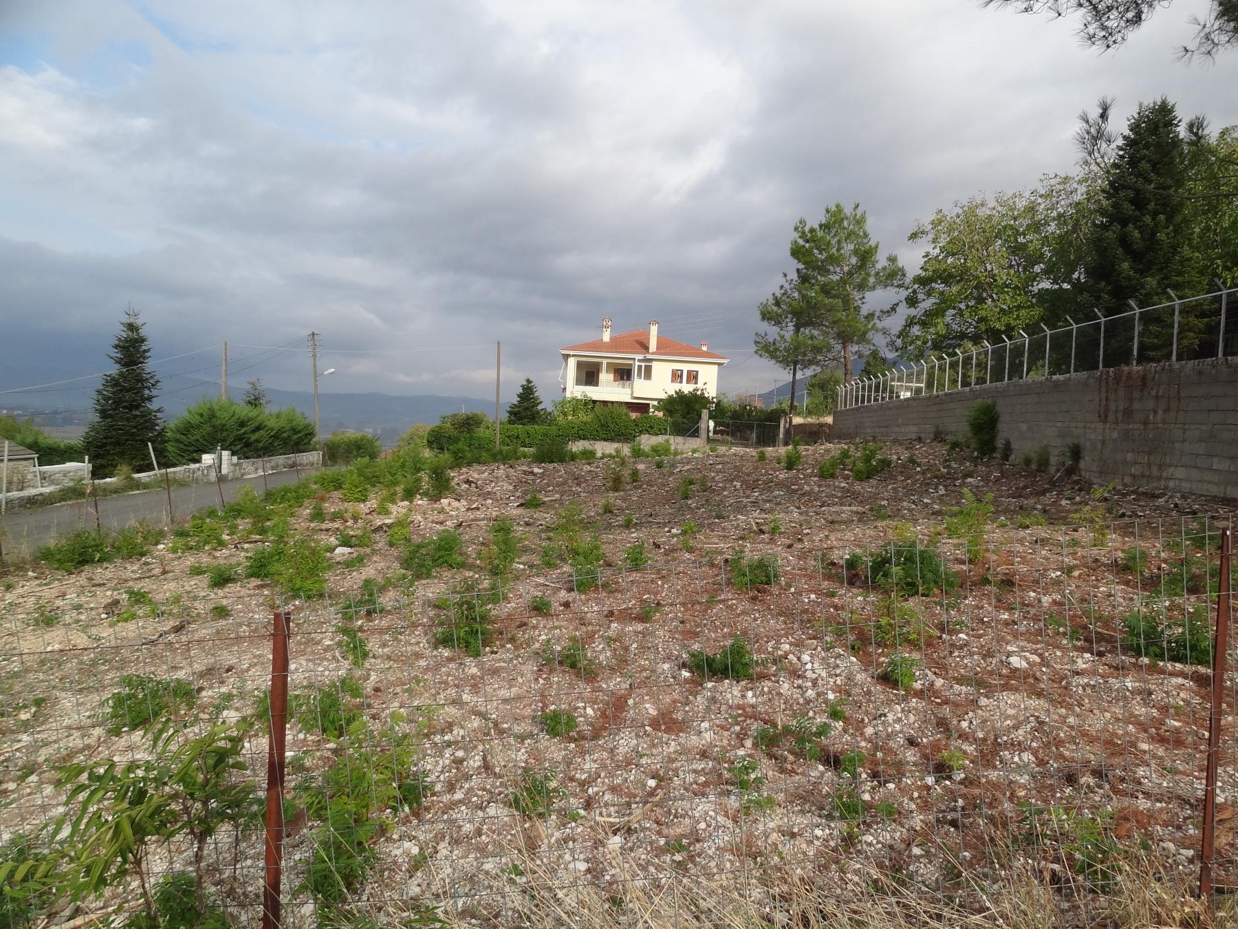 For sale a plot of 625 sq.m. with S.D. 0.8 and face to two streets in Kranoula, Ioannina