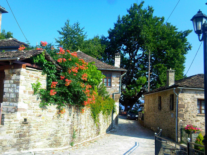 Πωλείται οικόπεδο στην Ελάτη στα Ζαγοροχώρια 1411 τμ.