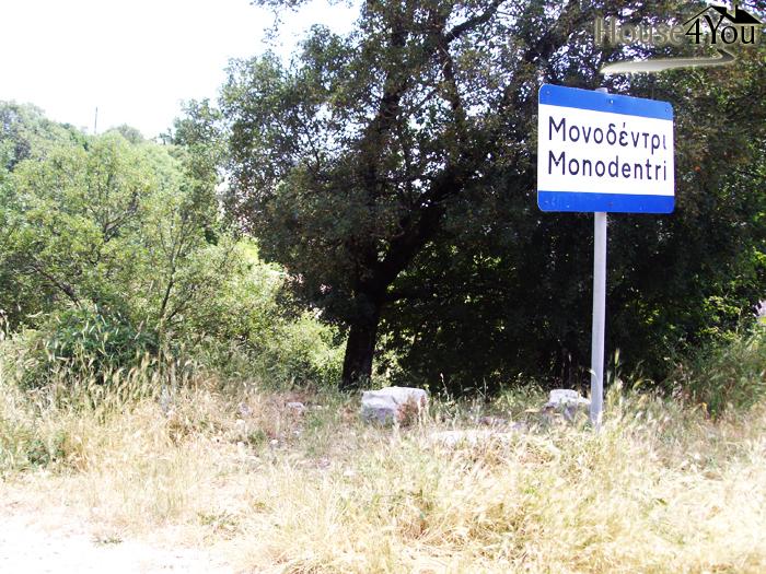 Πωλούνται οικόπεδα 850τ.μ. στην είσοδο του Μονοδενδρίου στα Ζαγοροχώρια