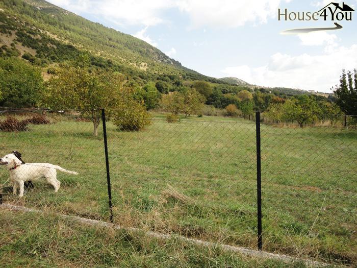 Πωλείται οικόπεδο 1000τμ. με οικιστικό ΣΔ στο Πέραμα Ιωαννίνων