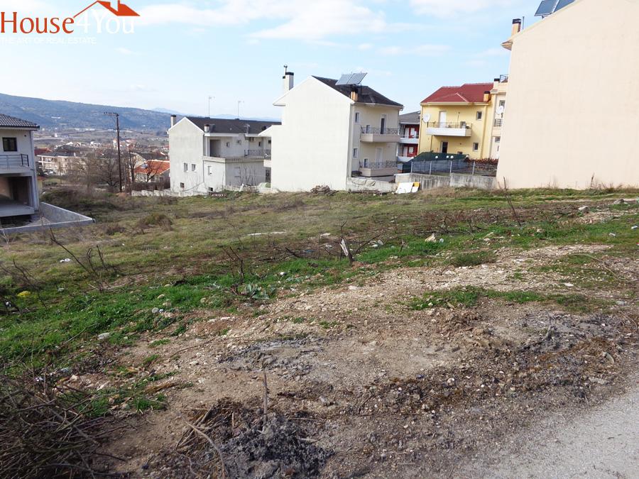 Πωλείται οικόπεδο 459τμ. με ΣΔ. 0.5 και πρόσωπο στην Ρήγα Φεραίου 19μ. στα Καρδαμίτσια Ιωαννίνων